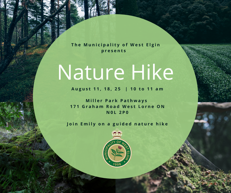 Nature Hike Poster for August