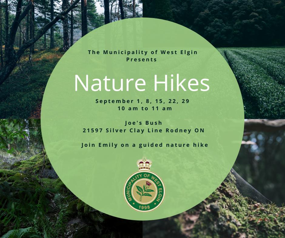 Nature Walk Poster September